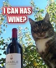 I can has wine?
