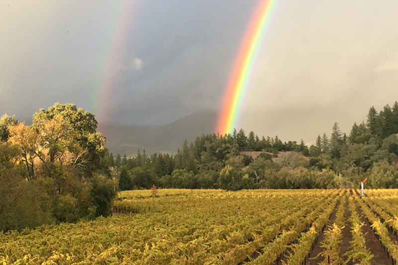 Grable Vineyards Double Rainbow